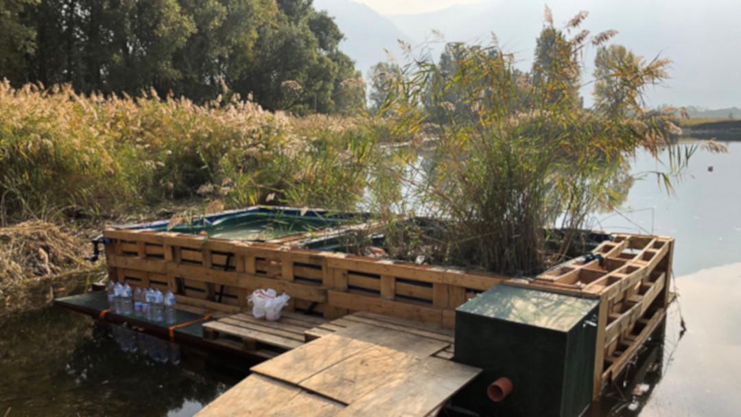 Studenti creativi per la qualità ambientale del Lago d'Iseo